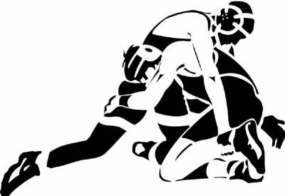 Image result for wrestling images